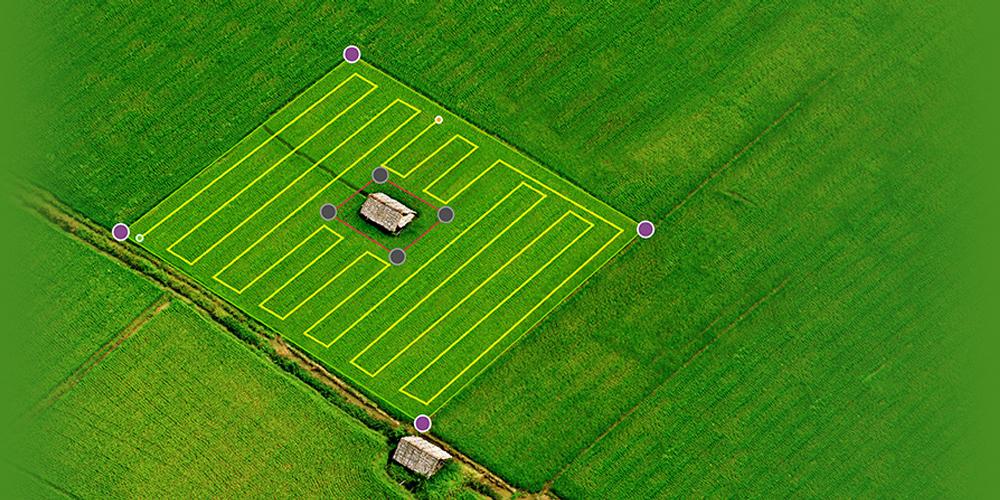 Giải pháp quản lý cánh đồng thông minh