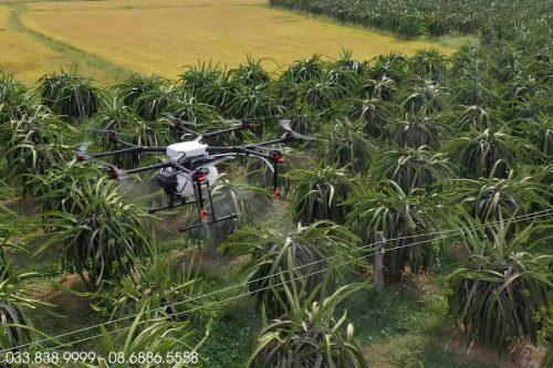 Máy bay phun thuốc cho cây Thanh Long - Binh Phuoc 2
