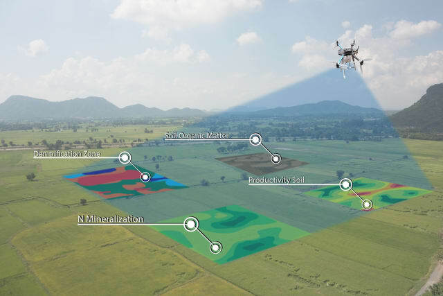 Giám sát và phân tích cây trồng bằng máy bay