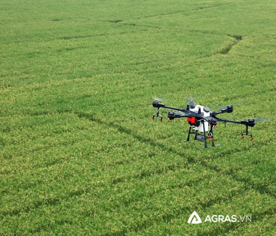 Máy bay phun thuốc trừ sâu, bảo vệ thực vật T16 - agras.vn - ảnh 2