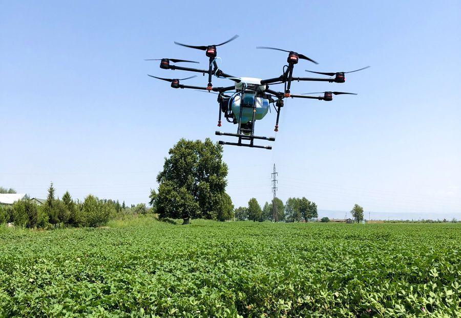 Máy bay phun thuốc trừ sâu cho cây Bông