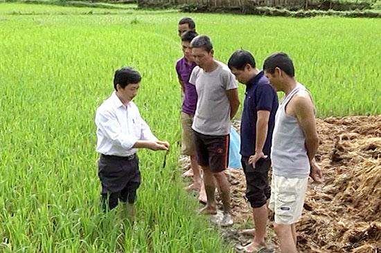 cán bộ nông nghiệp hướng dẫn sử dụng thuốc bảo vệ thực vật an toàn đúng cách