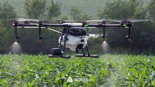 Máy bay MG-1P đang phun thuốc bảo vệ thực vật cho cây trồng