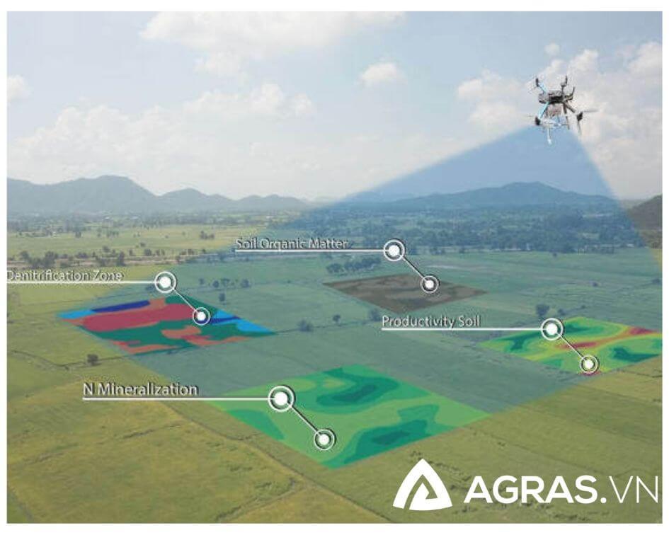 Máy bay đang vẽ khảo sát địa hình và sức khỏe cho cây trồng